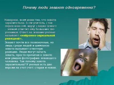 почему человек зевает часто